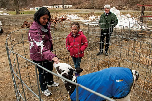 Beth Kennett watches her visitors get acquainted with one of Liberty Hill's calves.